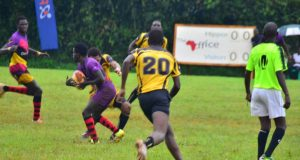 Covid-19: Rhinos vs Buffaloes Rugby Premier League game postponed